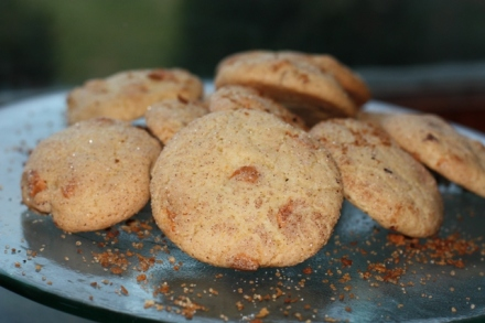 Cinnamon Scotch Cookies (2)